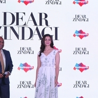 Press conference of Singapore Tourism Board and promotion of film Dear Zindagi Photos | Picture 1439109
