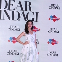 Press conference of Singapore Tourism Board and promotion of film Dear Zindagi Photos | Picture 1439110