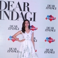 Press conference of Singapore Tourism Board and promotion of film Dear Zindagi Photos | Picture 1439119