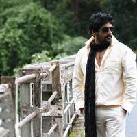Vidharth - Pattaya Kelappanum Pandiya Movie Stills