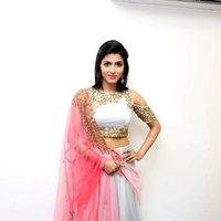 Sai Dhanshika - Rani Movie Audio Launch Photos | Picture 1440096