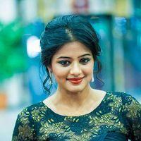Priyamani - Celebs at SIIMA Awards 2013 Photos