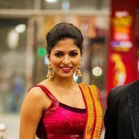 Parvathy Omanakuttan - Celebs at SIIMA Awards 2013 Photos