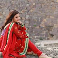 Nisha Agarwal - DK Bose Movie New Photos