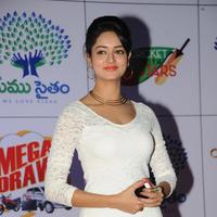 Shanvi Srivastava - Memu Saitam Dinner with Stars Red Carpet Photos