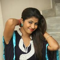 Geethanjali at Welcome to America Movie Audio Release Photos