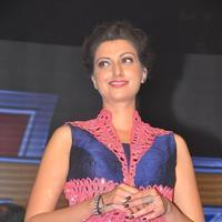 Hamsa Nandini - Rudhramadevi Audio Launch at Warangal Photos