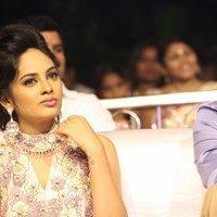 Nandita Swetha - Ekkadiki Pothavu Chinnavada Audio Success Celebrations Photos   Picture 1434000