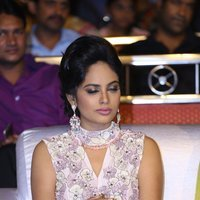Nandita Swetha - Ekkadiki Pothavu Chinnavada Audio Success Celebrations Photos   Picture 1433926
