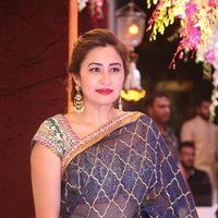 Jwala Gutta - Sania Mirza Sister Anam Mirza's Wedding Reception Photos