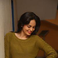 Nandita at Janaki Ramudu Audio Launch Photos | Picture 1437396
