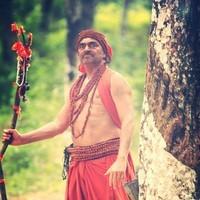 Aata Movie Stills   Picture 1437947