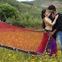Janaki Ramudu Movie Gallery | Picture 1438006