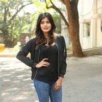 Hebah Patel at Ekkadiki Pothavu Chinnavada Thanks Meet Photos   Picture 1438308