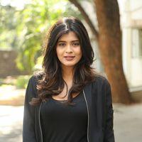 Hebah Patel at Ekkadiki Pothavu Chinnavada Thanks Meet Photos   Picture 1438305