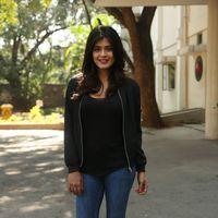 Hebah Patel at Ekkadiki Pothavu Chinnavada Thanks Meet Photos   Picture 1438307