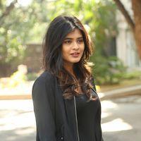 Hebah Patel at Ekkadiki Pothavu Chinnavada Thanks Meet Photos   Picture 1438299