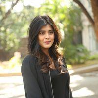 Hebah Patel at Ekkadiki Pothavu Chinnavada Thanks Meet Photos   Picture 1438302