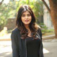 Hebah Patel at Ekkadiki Pothavu Chinnavada Thanks Meet Photos   Picture 1438303