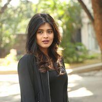 Hebah Patel at Ekkadiki Pothavu Chinnavada Thanks Meet Photos   Picture 1438298