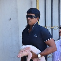 Ravi Babu - Ravibabu in ATM Queue with Piglet Photos   Picture 1438324