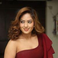 Nikesha Patel at Araku Road Lo Press Meet Photos   Picture 1439425