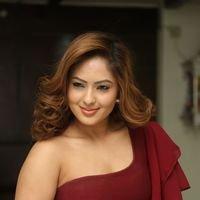 Nikesha Patel at Araku Road Lo Press Meet Photos   Picture 1439428