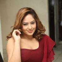 Nikesha Patel at Araku Road Lo Press Meet Photos   Picture 1439447
