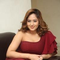 Nikesha Patel at Araku Road Lo Press Meet Photos   Picture 1439445