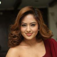 Nikesha Patel at Araku Road Lo Press Meet Photos   Picture 1439431