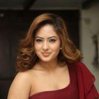 Nikesha Patel at Araku Road Lo Press Meet Photos   Picture 1439429