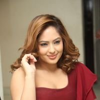 Nikesha Patel at Araku Road Lo Press Meet Photos   Picture 1439448