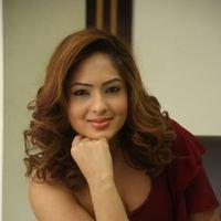 Nikesha Patel at Araku Road Lo Press Meet Photos   Picture 1439434