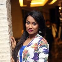 Sharmila Kasala at BCL Tollywood Celebrity Cricket Logo Launch Photos   Picture 1440288