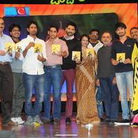 Uyyala Jampala Movie Audio Launch Photos | Picture 678403