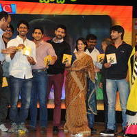 Uyyala Jampala Movie Audio Launch Photos