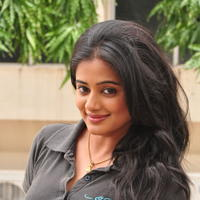 Priyamani Hot Stills at Chandi Movie Press Meet