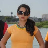 Bhavana Menon - Swiss Bank ki Daredi Movie Stills