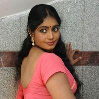 Jayavani Hot Saree Photos