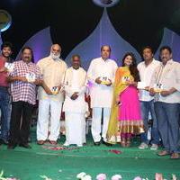 Ulavacharu Biryani Movie Audio Launch Photos | Picture 738197