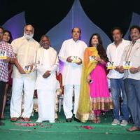 Ulavacharu Biryani Movie Audio Launch Photos | Picture 738201
