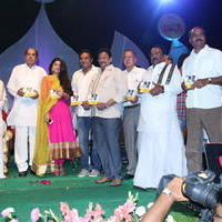 Ulavacharu Biryani Movie Audio Launch Photos | Picture 738204