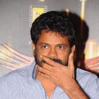 Sukumar (Director) - 1 Nenokkadine Movie Success Meet Pictures
