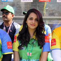 Bhavana Menon - CCL 4 Kerala Strikers Vs Telugu Warriors Match Pictures