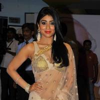 Shriya Saran - Manam Movie Premiere Show Photos | Picture 756505