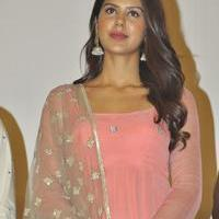 Sonam Bajwa - Kappal Movie Success Meet Stills