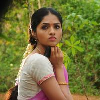 Sunaina - Vanmam Movie New Stills