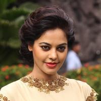 Bindu Madhavi - Tamilukku En Ondrai Aluthavum Movie Press Meet Photos