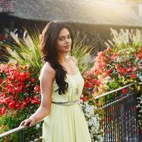 Bindu Madhavi - Savaale Samaali Movie Photos