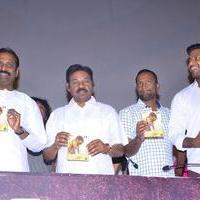 Paayum Puli Movie Audio Launch Stills | Picture 1086111